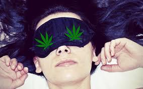 cbd olie cbd cannabidiol wiet hennep thc olie buy reseller beste cbd super cbd panna epilepsie hennepolie wietolie cannabis twiety medihemp jacob hooy